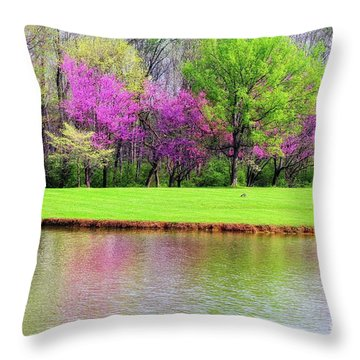 Spring Throw Pillow by Geraldine DeBoer