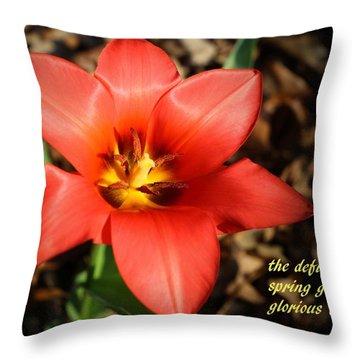 Spring Gladiator Throw Pillow by Scott Kingery