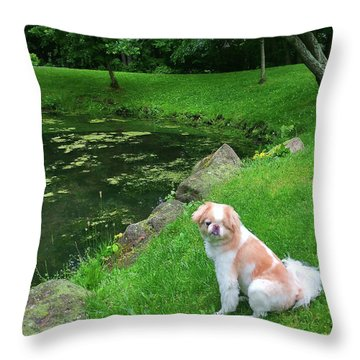 Throw Pillow featuring the photograph Spring Green Japanese Chin by Roger Bester