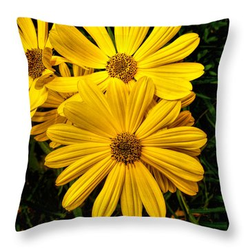Spring Has Come To Georgia Throw Pillow