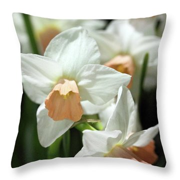 Spring Has Spring Throw Pillow by Mary Haber