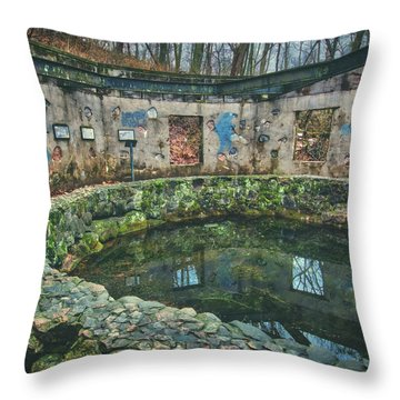 Throw Pillow featuring the photograph Spring House 2 - Paradise Springs - Kettle Moraine State Forest by Jennifer Rondinelli Reilly - Fine Art Photography