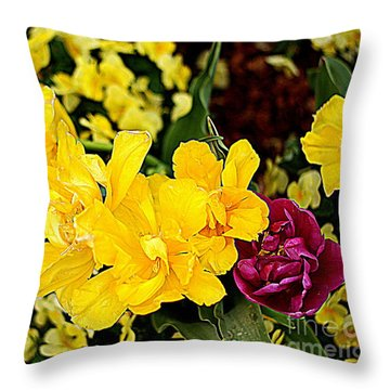 Throw Pillow featuring the photograph Spring In Dallas by Diana Mary Sharpton