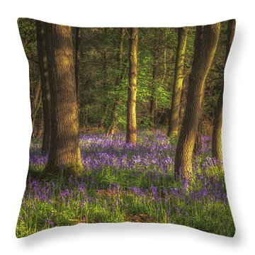 Spring In Haywood No 1 Throw Pillow