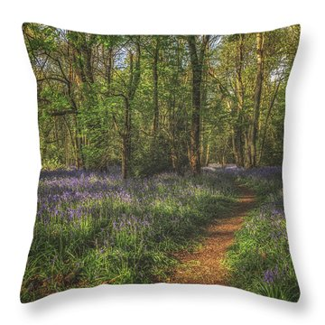 Spring In Haywood No 5 Throw Pillow