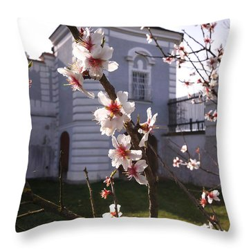 Spring In Herzogenburg, Lower Austria Throw Pillow by Menega Sabidussi