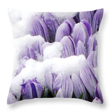 Spring In Hiding Throw Pillow by Angela Davies