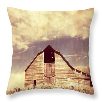 Throw Pillow featuring the photograph Spring In Kansas  by Julie Hamilton