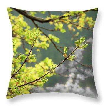 Spring In The Arboretum Throw Pillow