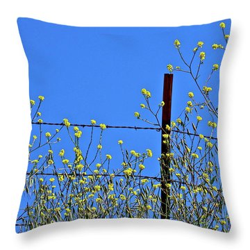 Spring In The Country Throw Pillow