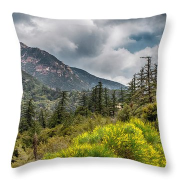 Spring In The Forest Throw Pillow