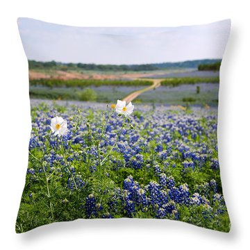 Spring In The Hill Country Throw Pillow