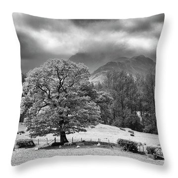 Spring In The Newlands Valley Throw Pillow