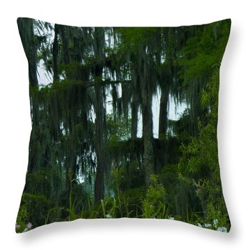Spring In The Swamp Throw Pillow