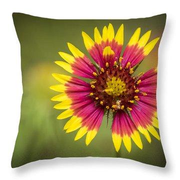 Spring Indian Blanket Throw Pillow