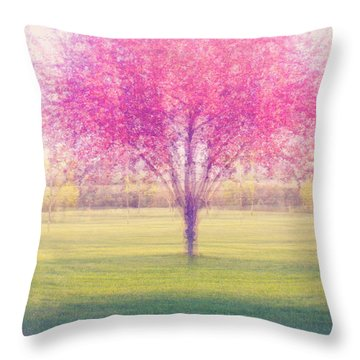 Spring Is A Blur Throw Pillow