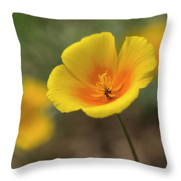 Throw Pillow featuring the photograph Spring Is Beckoning  by Saija Lehtonen