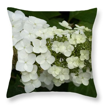 Spring Is Busting Out All Over Throw Pillow