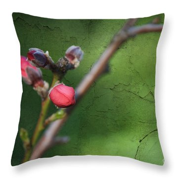 Spring Is Coming  Throw Pillow by Claudia Ellis