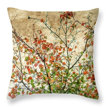Spring Is Gone Throw Pillow