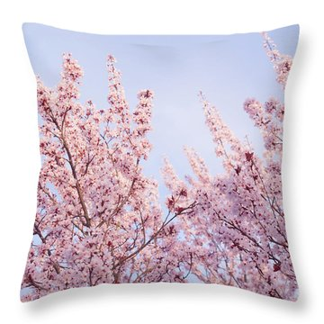 Spring Is In The Air Throw Pillow by Ana V Ramirez