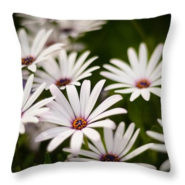 Throw Pillow featuring the photograph Spring Is In The Air by Kelly Wade