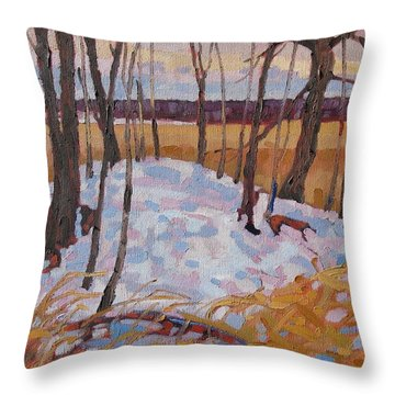Spring Island Throw Pillow by Phil Chadwick