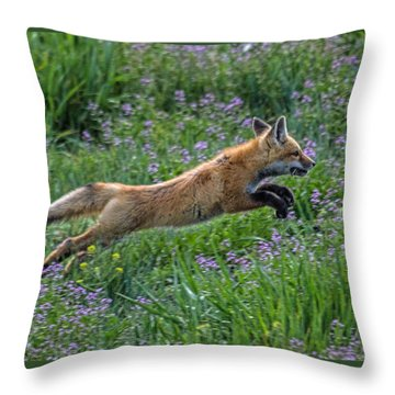 Spring Kit Throw Pillow
