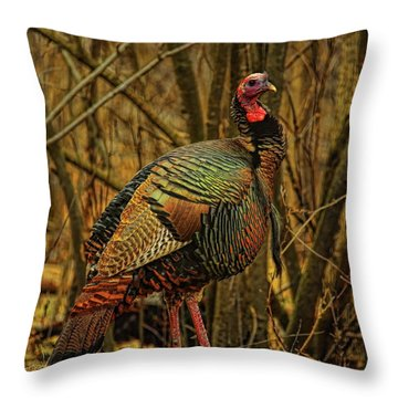 Spring Longbeard Throw Pillow