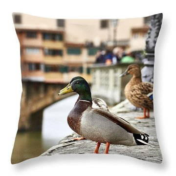 Spring Love Ducks Throw Pillow