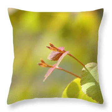 Throw Pillow featuring the photograph Spring Macro2 by Jeff Burgess