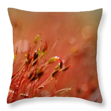 Throw Pillow featuring the photograph Spring Macro3 by Jeff Burgess