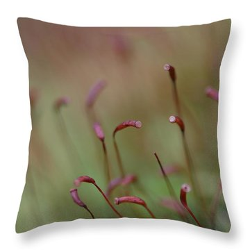 Throw Pillow featuring the photograph Spring Macro5 by Jeff Burgess