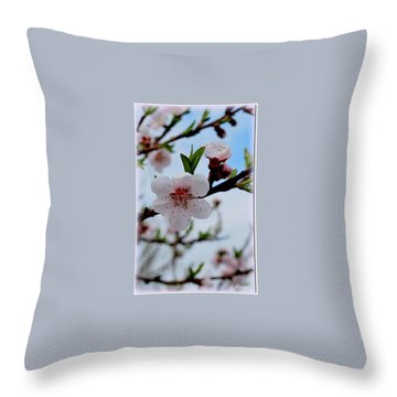 Throw Pillow featuring the photograph Spring by Marija Djedovic