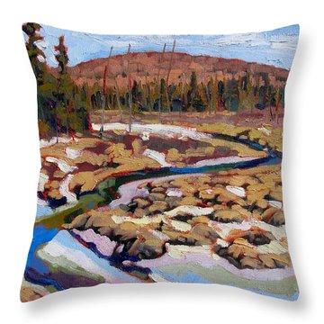 Spring Marsh Algonquin Throw Pillow
