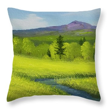 Throw Pillow featuring the painting Spring Meadow Brook by Frank Wilson