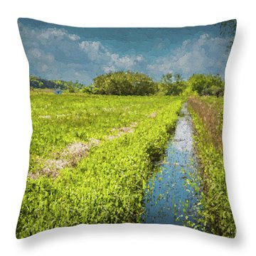 Spring Meadows Throw Pillow