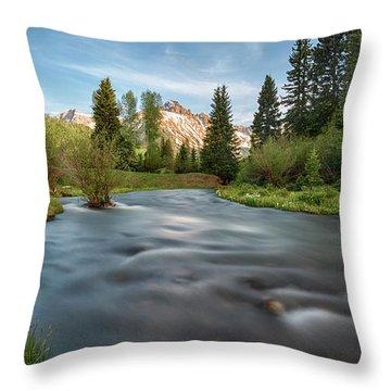 Spring Melt Throw Pillow