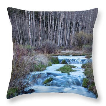 Spring Melt Off Flowing Down From Bonanza Throw Pillow by James BO Insogna
