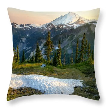 Throw Pillow featuring the photograph Spring Melt by Ryan Manuel