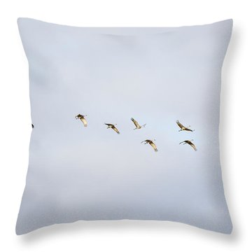 Spring Migration 2 Throw Pillow
