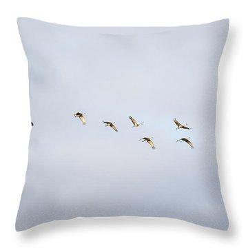 Spring Migration 2 Throw Pillow