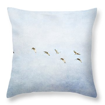 Spring Migration 2 - Textured Throw Pillow