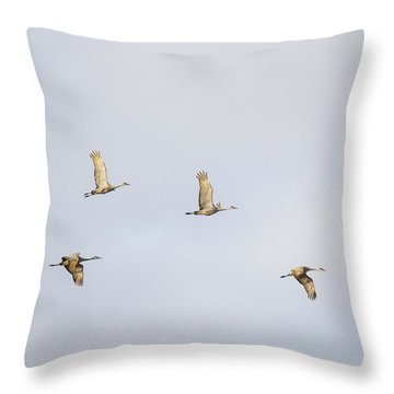 Spring Migration 3 Throw Pillow