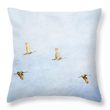 Spring Migration 3 - Textured Throw Pillow