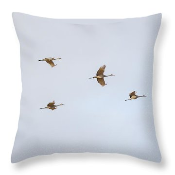 Spring Migration 4 Throw Pillow