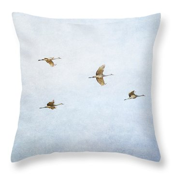 Spring Migration 4 - Textured Throw Pillow