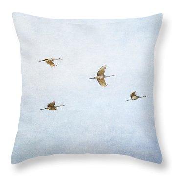 Spring Migration 4 - Textured Throw Pillow