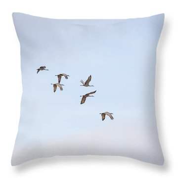 Spring Migration Throw Pillow