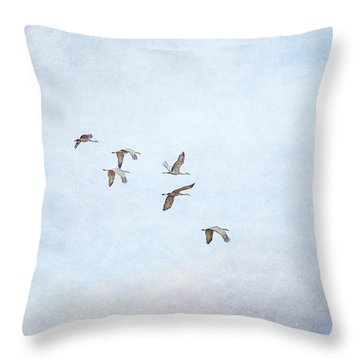 Spring Migration - Textured Throw Pillow